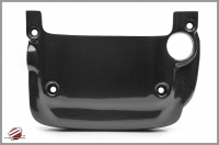 PASSWORD JDM CARBON FIBER ENGINE PLENUM COVER